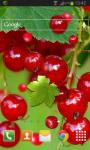 Berry Live Wallpaper HD Free screenshot 2/2