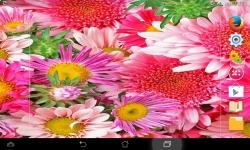 Amazing Flowers screenshot 1/6