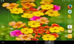 Amazing Flowers screenshot 2/6
