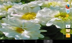 Amazing Flowers screenshot 3/6