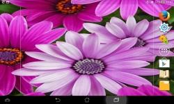 Amazing Flowers screenshot 6/6
