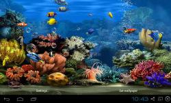 Koi Aquarium Live Wallpaper screenshot 4/4