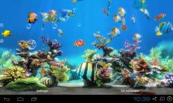 Koi Fish Live Wallpaper Free screenshot 4/4