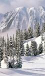 Winter Landscapes Wallpapers screenshot 2/6