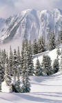 Winter Landscapes Wallpapers screenshot 5/6
