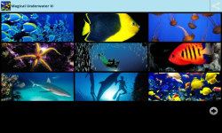 Magical Underwater Wallpapers screenshot 1/6