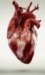 Beating Live Heart Live Wallpaper screenshot 3/3