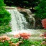Park Waterfall Live Wallpaper screenshot 1/3
