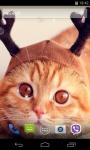Cute Cats Live Wallpaper 3D screenshot 2/4