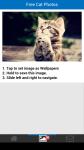 Free Cat Photos screenshot 3/6