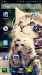Free Cat Photos screenshot 6/6