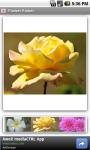 Flower Power FREE screenshot 1/3