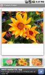 Flower Power FREE screenshot 3/3