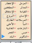 New Quran Tafseer for java mobile screenshot 2/5