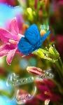 Beautiful Butterfly Magical Flower screenshot 3/3