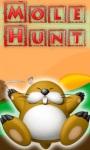 Mole Hunt Game screenshot 1/1