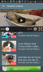 Funniest Animal Videos screenshot 1/3