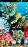 Coral reef live wallpaper free screenshot 3/4