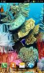 Coral reef live wallpaper free screenshot 4/4