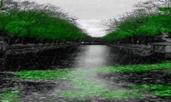 Black Rainy Road Live Wallpaper screenshot 2/3