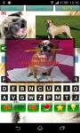 Funny Dog Quiz screenshot 3/4
