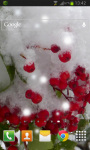 Winter Berry Live Wallpaper screenshot 2/2