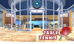 Ping Pong tabel tennis 3D screenshot 1/5
