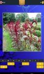 Flower Foto Guess screenshot 3/6