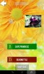 Ultimate Flower Quiz screenshot 3/6