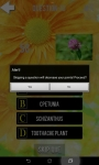 Ultimate Flower Quiz screenshot 5/6