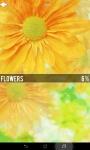 Ultimate Flower Quiz screenshot 6/6