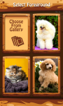 Puffy Pets Zipper Lock Screen screenshot 3/6