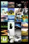 Explore Flickr screenshot 1/1