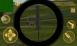 Hunting season: Jungle sniper screenshot 4/6