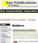 Triangle News Leader - BB screenshot 1/1