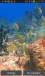 Colorful Fish in Sea Bed LWPfree screenshot 2/3