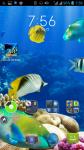 Fish Live HD Wallpaper screenshot 4/4
