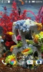 Real Aquarium Video HD Live Wallpaper screenshot 1/4