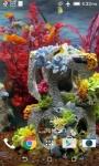 Real Aquarium Video HD Live Wallpaper screenshot 3/4