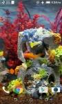 Real Aquarium Video HD Live Wallpaper screenshot 4/4