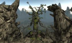 Oak Tree Simulation 3D screenshot 5/6