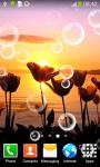Best Tulips Live Wallpapers screenshot 6/6