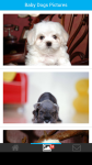 Baby Dogs Pictures screenshot 2/6