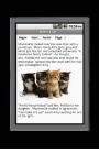 Momma Cat Story screenshot 2/3