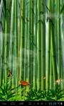 Butterflies in the bamboo fore lwp screenshot 2/4