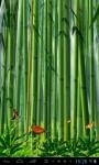 Butterflies in the bamboo fore lwp screenshot 3/4