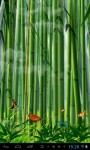 Butterflies in the bamboo fore lwp screenshot 4/4