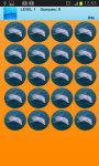 Dolphins Memory Game Free screenshot 1/2