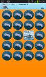 Dolphins Memory Game Free screenshot 2/2
