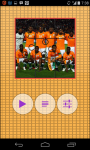 Cote d Ivoire Worldcup Picture Puzzle screenshot 2/6